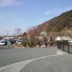 松山植木まつり2